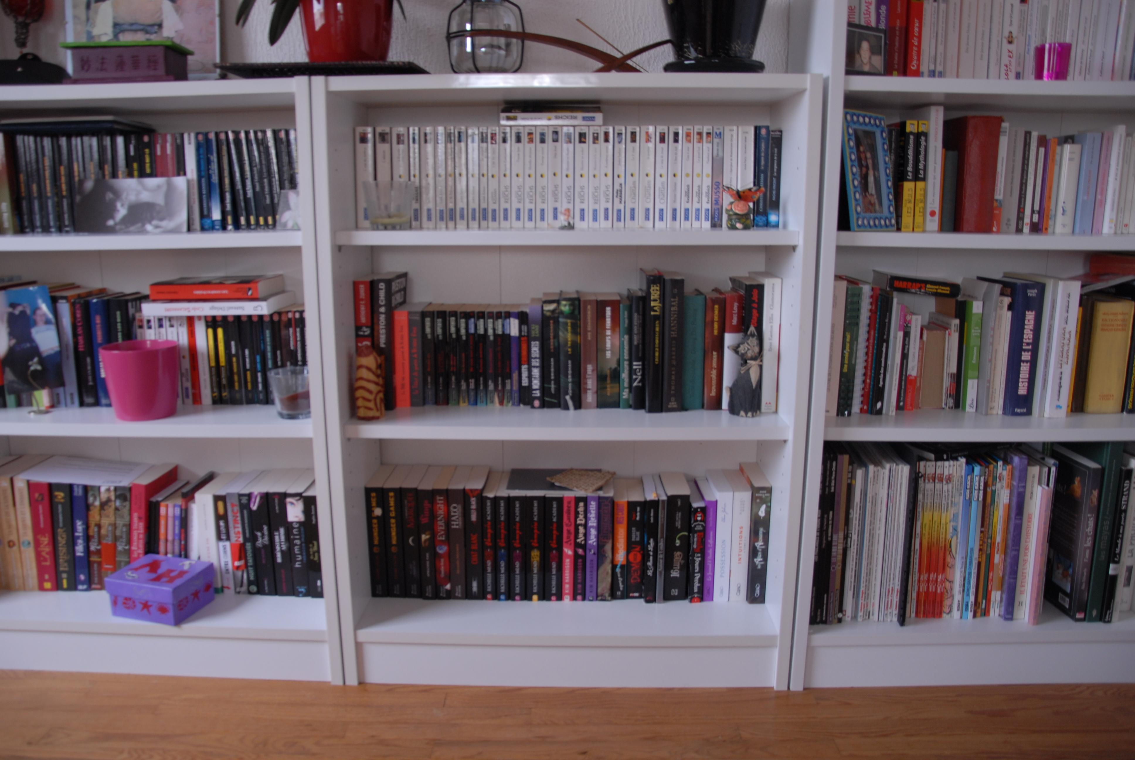 la biblioth que de muti muti et ses livres. Black Bedroom Furniture Sets. Home Design Ideas