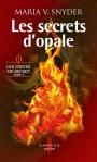 les portes du secret tome 3 les secrets d'opale